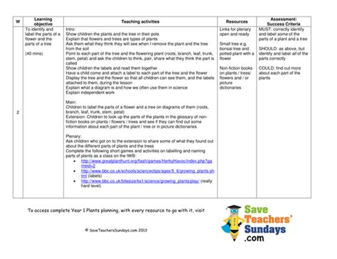 parts   plant  tree lesson plan worksheet