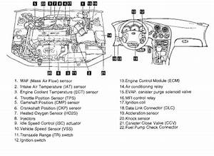 2002 Hyundai Sonata Parts Diagram