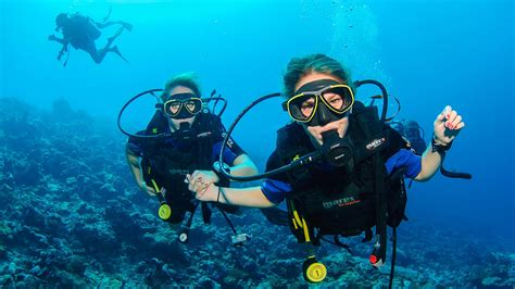 Padi Dive by Padi Open Water Diver Scuba Diver Courses Maldives