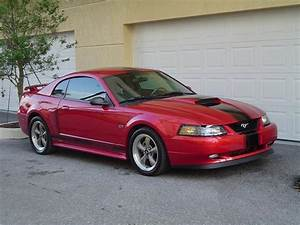 about lowering 03 gt - Ford Mustang Forum
