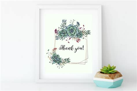 succulents  green  illustrations  yellow images
