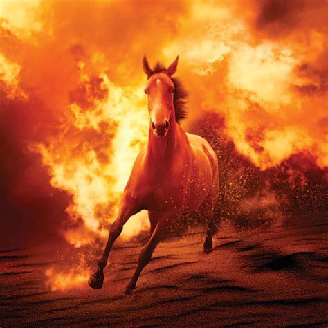 prepare   threat  wildfire horserider
