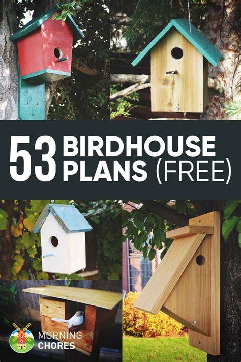 diy bird house bird feeder plans   attract    garden bird houses