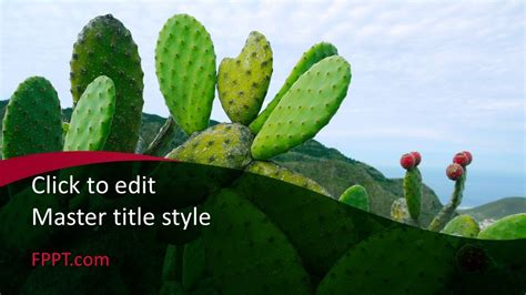 cacti powerpoint template  powerpoint templates