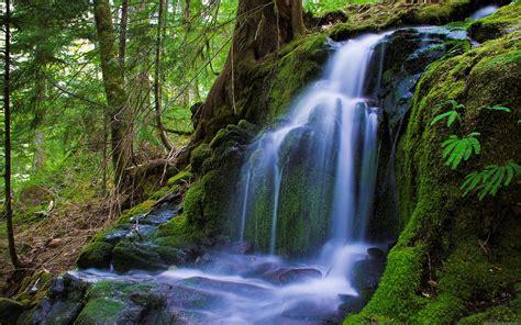 Free Nature Wallpaper Hd Background Widescreen 7033 Hd