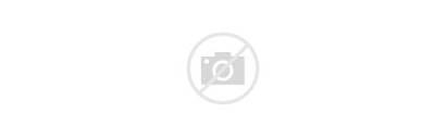 Israel Study Biblical Institute Program Lewis Abraham