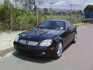 Mercedes Benz Slk 230 Kompressor 1998 : 2004 mercedes benz slk class user reviews cargurus ~ Jslefanu.com Haus und Dekorationen