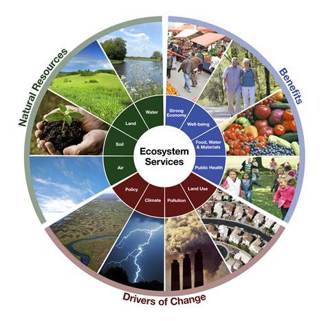 Ecosystem Services in EnviroAtlas