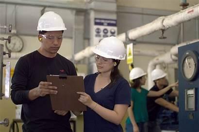 Industrial Engineering Engineer Working Wiki