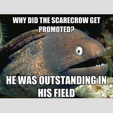 Why Did The Scarecrow Get Promoted? He Was Outstanding In His Field  Bad Joke Eel Quickmeme