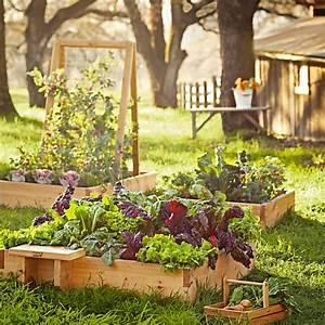 15 Raised Garden Bed Ideas