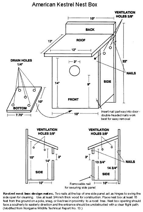 american kestrel nest box  bird house plans bird house plans  bird houses diy