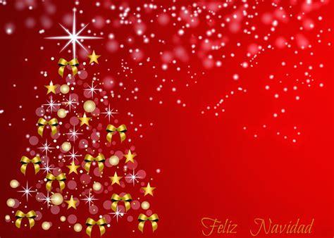 plantilla árbol de navidad para imprimir plantillas para imprimir tarjetas de navidad enrhedando