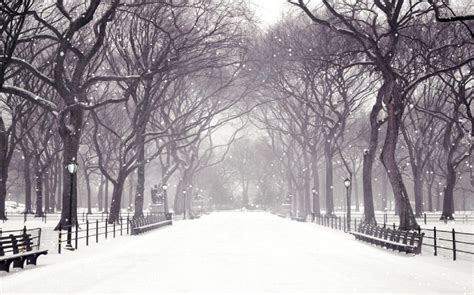 Winter Snow Animated Wallpaper - winter snow animated wallpaper torrent 1337x