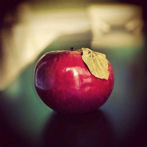 los mejores  alimentos  controlar la diabetes tipo