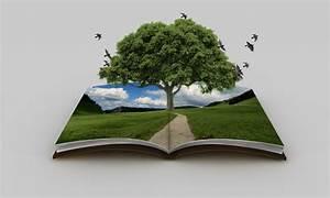 Book Of Nature Bleene Digital Portfolio