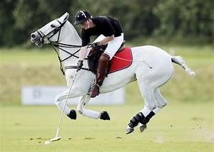 Prince Harry: Prince Harry polo match