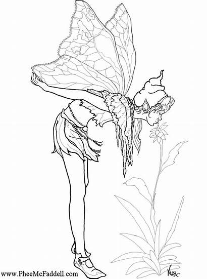 Coloring Fairy Pages Fairies Pheemcfaddell Amy Brown