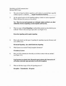 31 Biology 12 The Cell Review Worksheet
