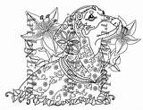 Dachshund Coloring Single sketch template