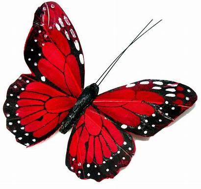 Butterflies Pretty Paper Cupcake