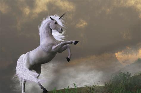 problem   rise  unicorn start ups virgin