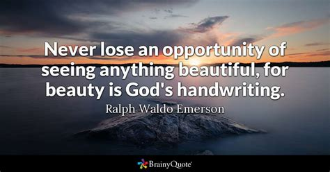 lose  opportunity    beautiful