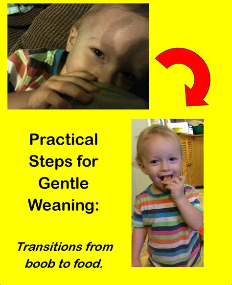 Practical Steps For Gentle Weaning