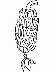 Coloring Pages Apple Fruit Drawing 4511279ab379b52e733ac68d9d809a17 Pear Banana Fruits