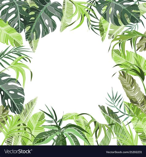 tropical jungle plants background royalty  vector image