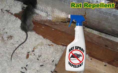 rat repellent  analysis  mothballs cat urine