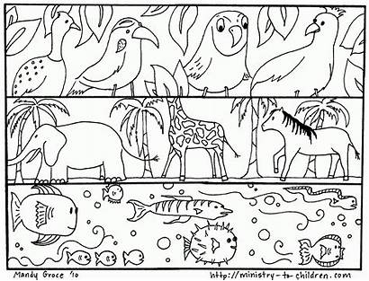 Coloring Creation Pages God Animals Created Earth