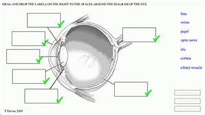 Eye Diagram Without Labels