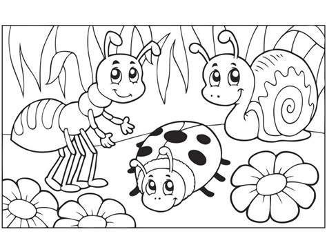 Bug Coloring Pages For Preschool Elitflat