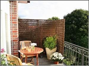 Pflanzen Sichtschutz Balkon : pflanzen sichtschutz fr balkon balkon house und dekor galerie 5nwlbnrrao ~ Eleganceandgraceweddings.com Haus und Dekorationen