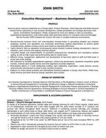 resume of ceo pdf executive resume template basic resume templates