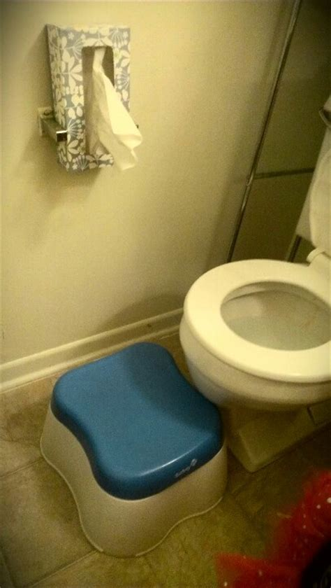 25 Best Ideas About Clogged Toilet On Pinterest