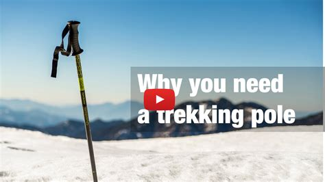 Why You Need A Trekking Pole  Indiahikes