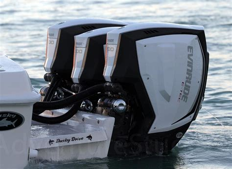 Outboard Motors For Sale Cbell River by Lake County Brp Evinrude Johnson