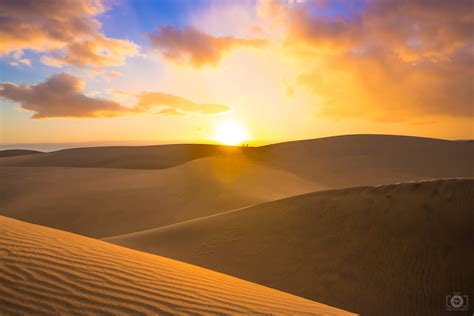 Desert Sunset Background - High-quality Free Backgrounds