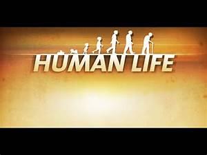 Human Life Apps On Google Play