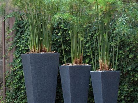 Tall Black Plant Pots
