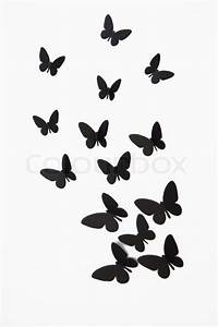 Black butterfly isolated on white background Stock Photo