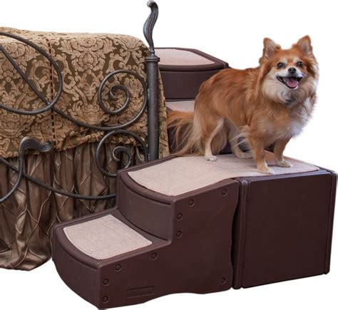 pet gear easy step bed stair for dogs chewy