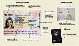 срок действия паспорта пиб
