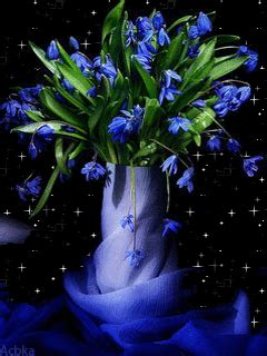 sparkling blue flowers pictures   images