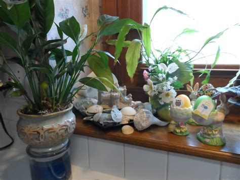 Kitchen Window Plants And 9 Window Decorating Ideas