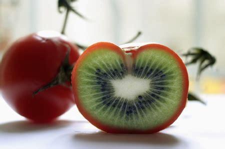 Alimenti Geneticamente Modificati Maggio 2013 La Forzadellanatura S