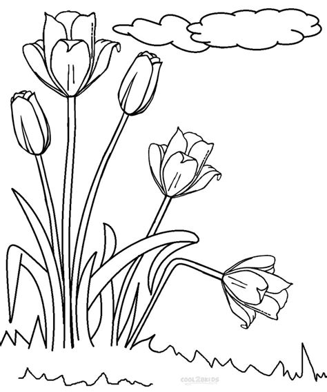 printable tulip coloring pages  kids coolbkids