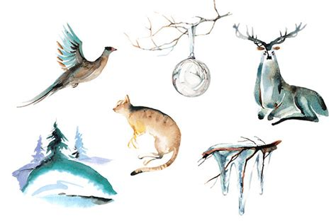 Winter Animal Watercolor Clipart Set Illustrations